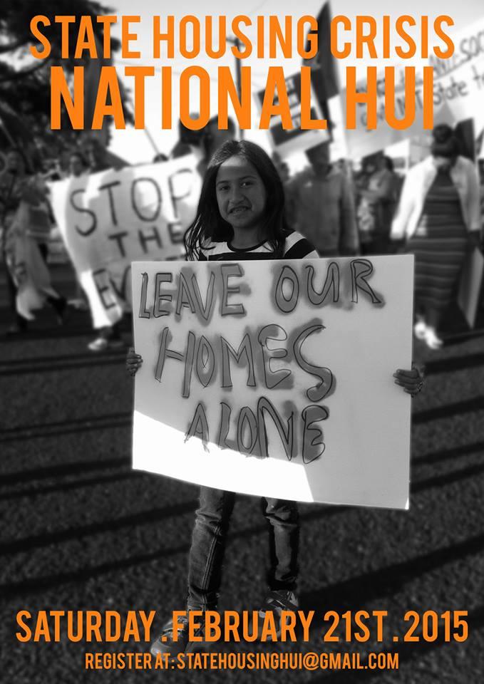 State housing crisis National Hui