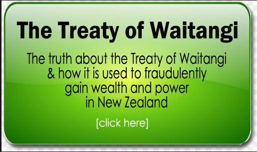 Anti-Treaty politcal party