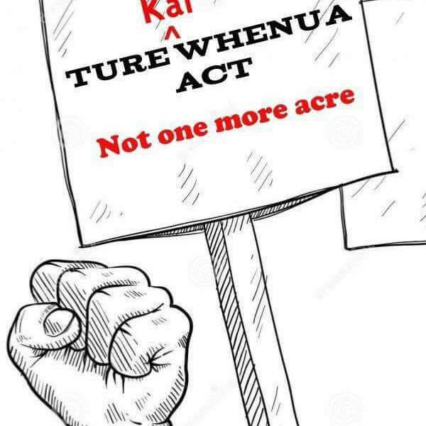 The Ture Whenua Maori Bill – one step forward …